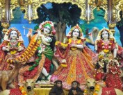 Sri Sri Radha Gopinath (14)