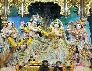 Sri Sri Radha Gopinath (20)