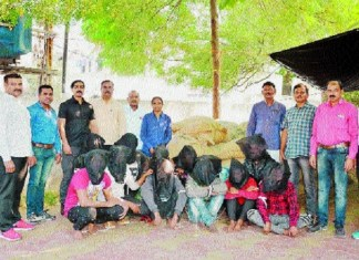 Nagpur Crime Branch cracks betel nut theft case within 24 hrs