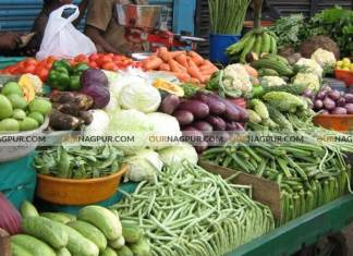 vegetables-milk-home-delivery-list-in-nagpur-nmc