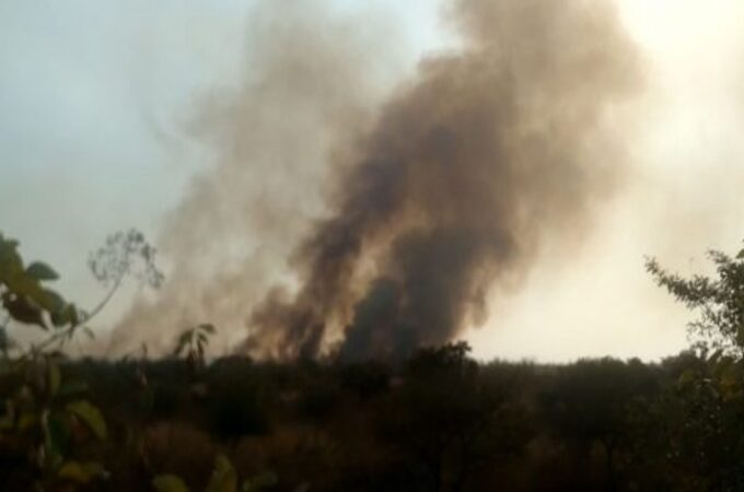 Major fire broke out at Ambazari Biodiversity Park in 50 hectares area