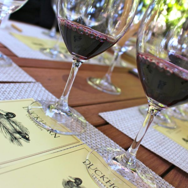Tasting Napa Valley with Platypus Wine Tours: our private tour experience at 3 distinct wineries | ournextadventure.co