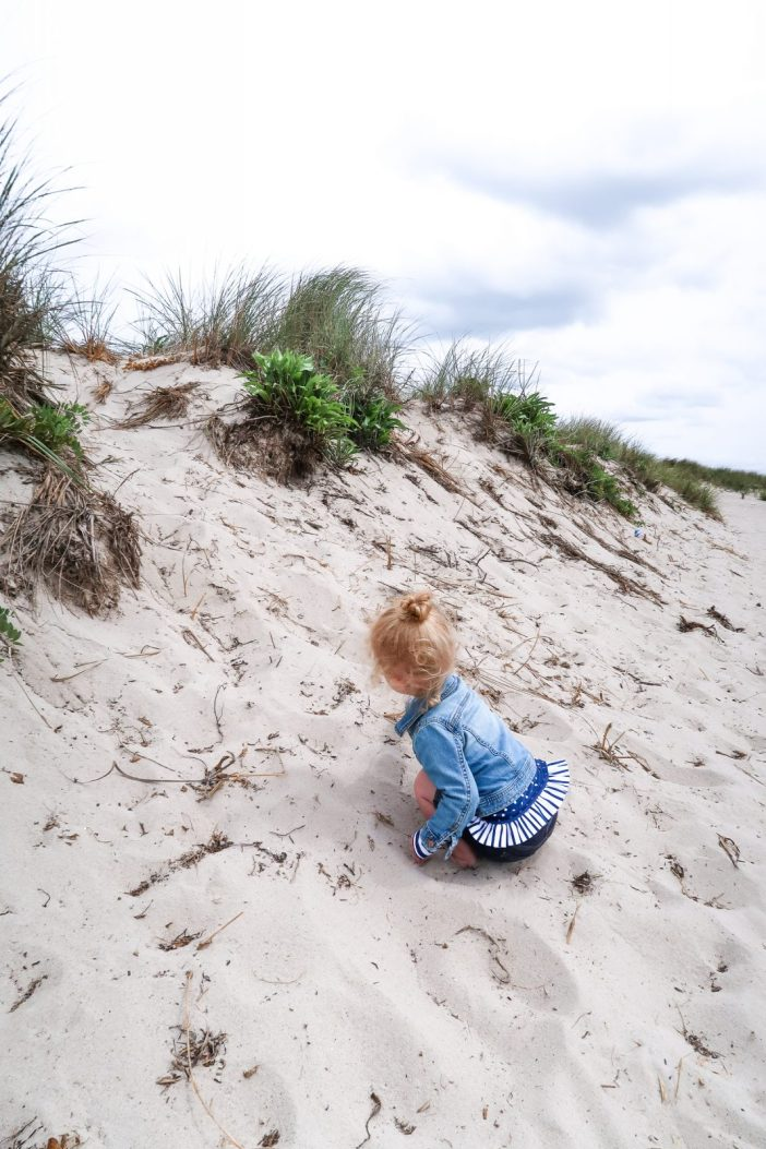8 Must-Have Experiences in Cape Cod with Kids | Our Next