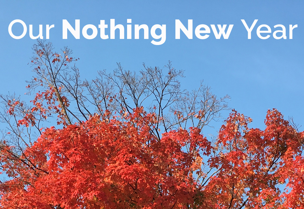 Our take on the Use It Up Challenge: the Nothing New Year