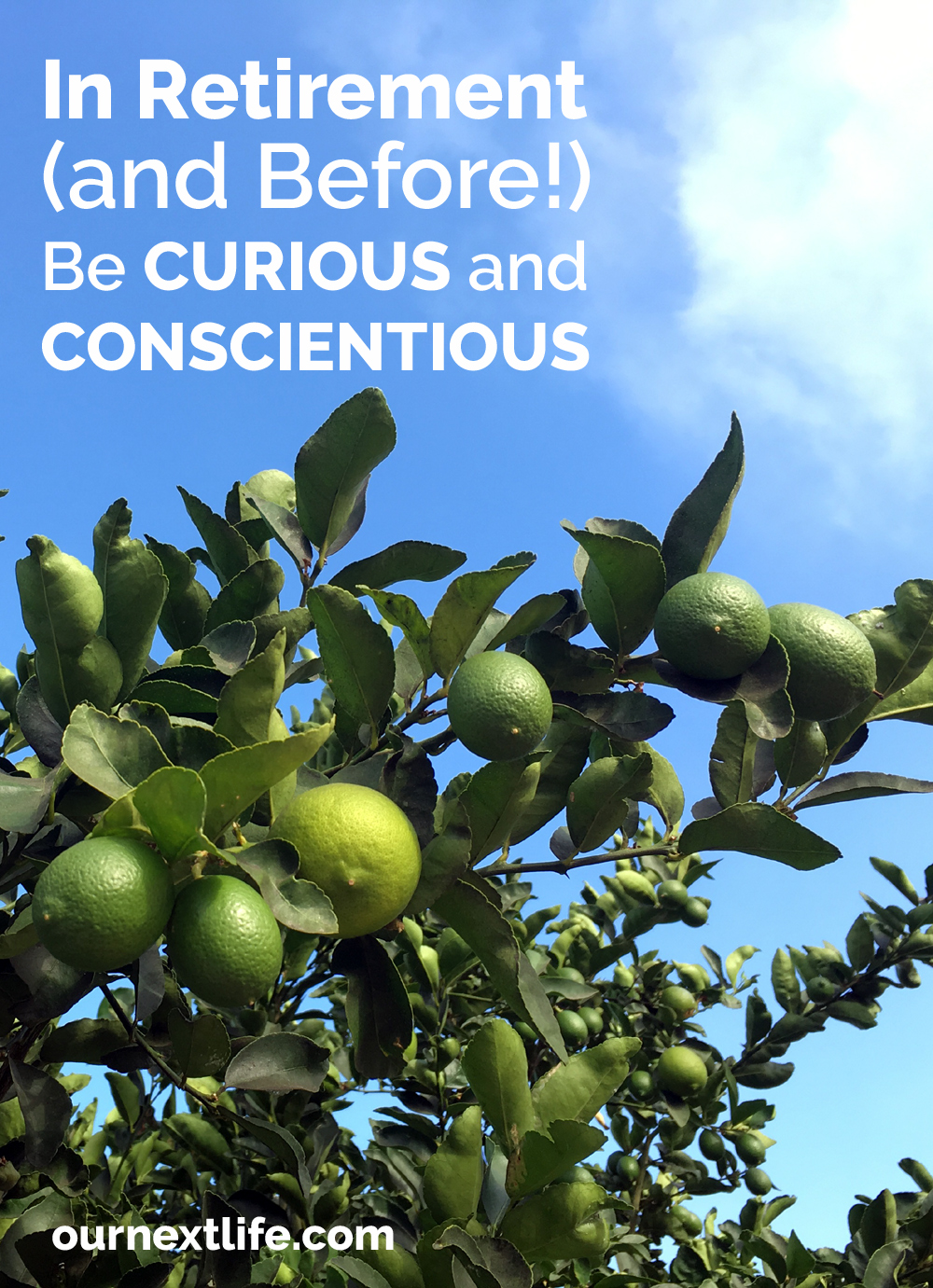 In Retirement (and Before!) Be Curious and Conscientious // Curiosity and conscientiousness are linked to happiness and longevity, and that's so important in retirement!