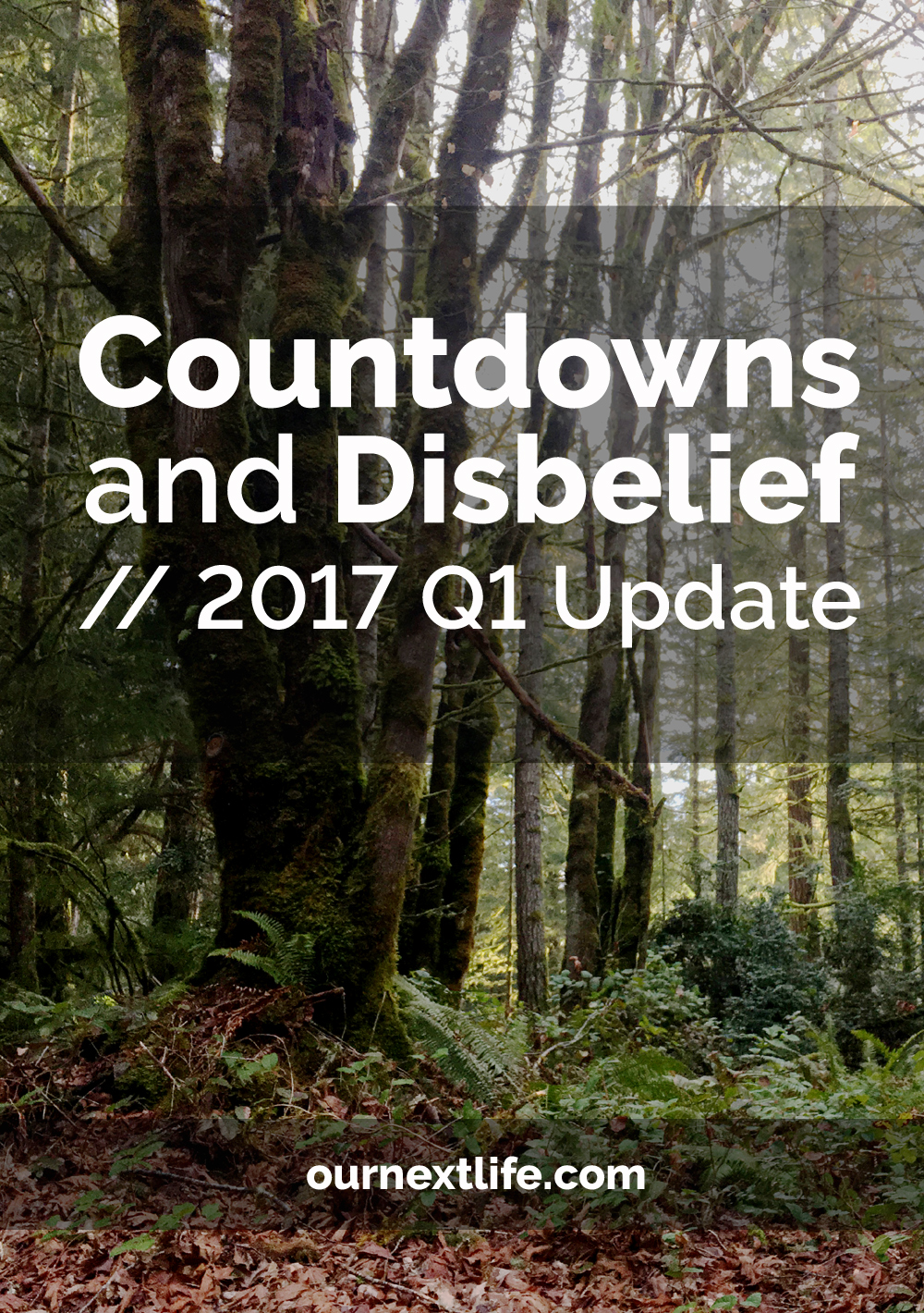 The countdown to early retirement is on! // Quarterly financial update plus countdowns and disbelief // Financial independence, retire early, retirement planning, financial planning