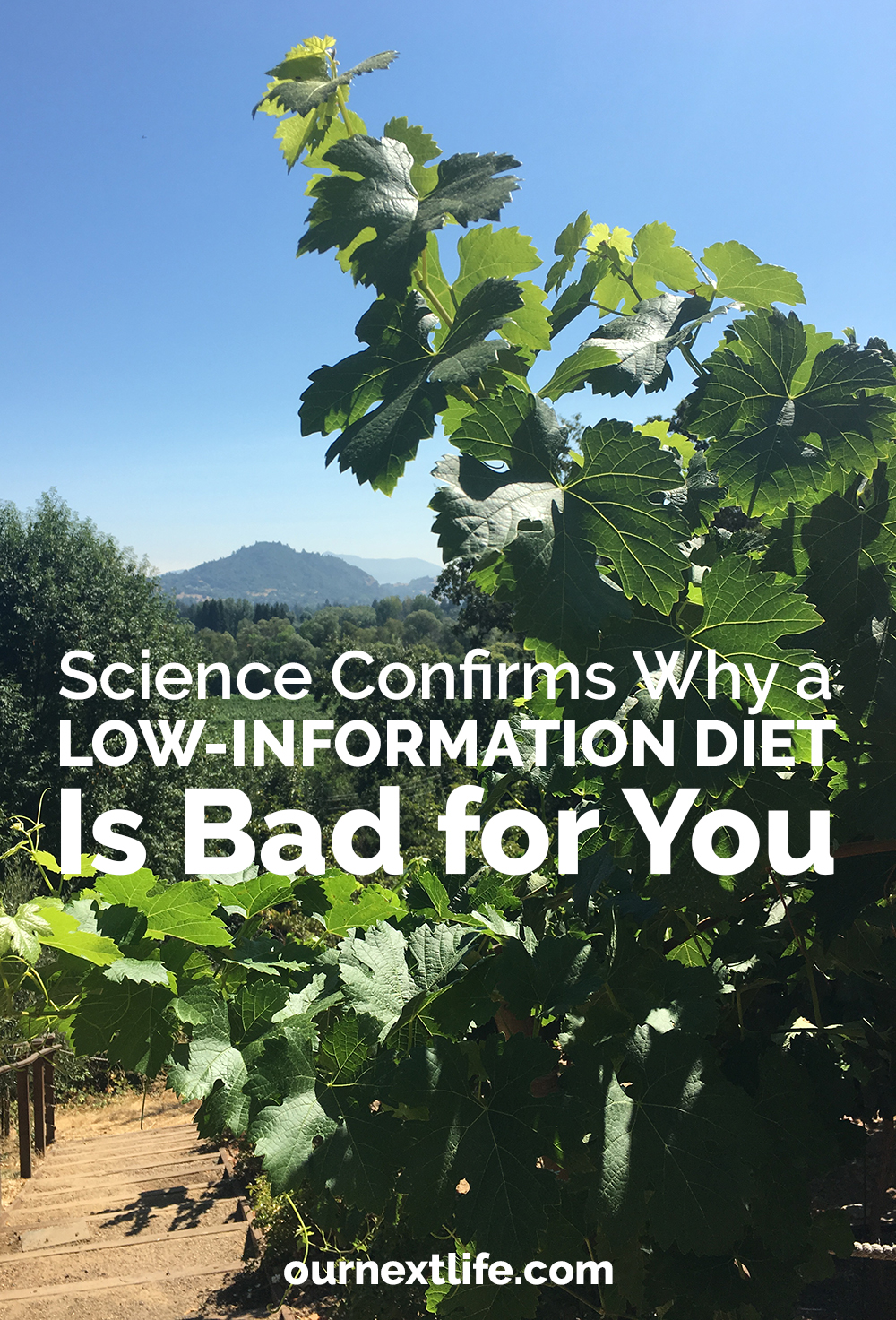 Science confirms why a low-information diet is bad for you // OurNextLife.com // early retirement, financial independence, productivity, lifestyle design, financial freedom, happiness, health, longevity