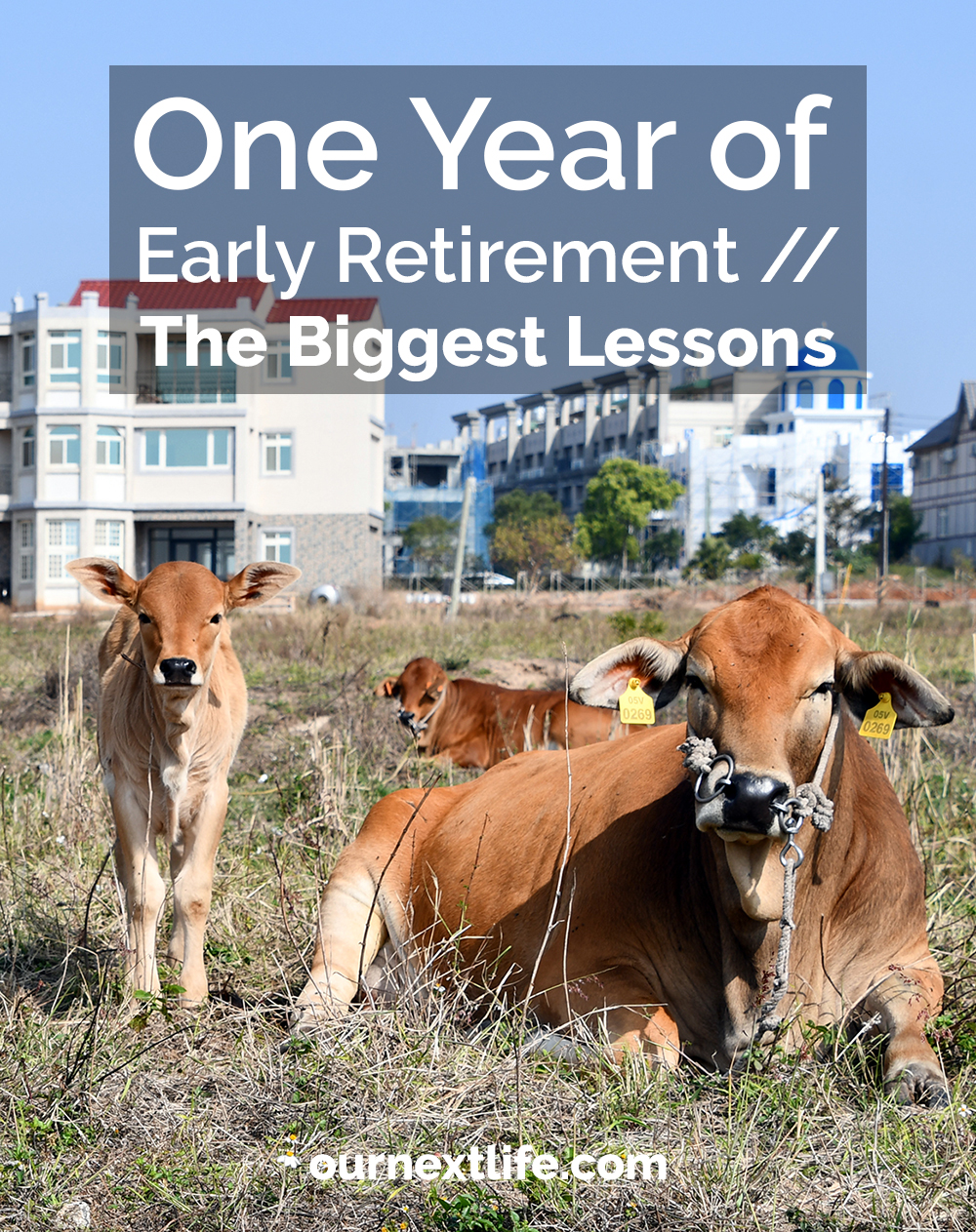 One Year of Early Retirement, Part 1: Biggest Lessons // Our Next Life // early retirement, financial independence, work optional living, purpose, adventure