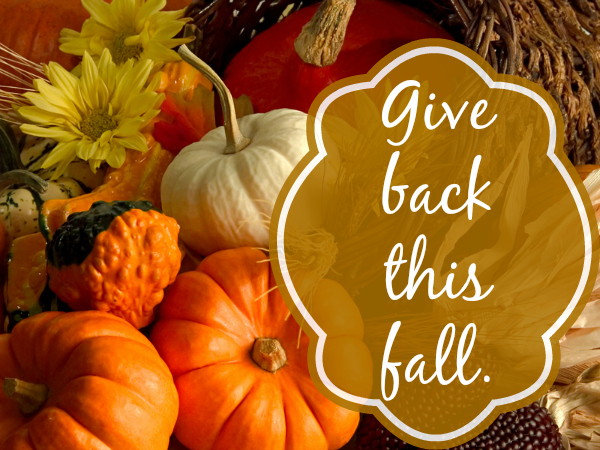 give back this fall