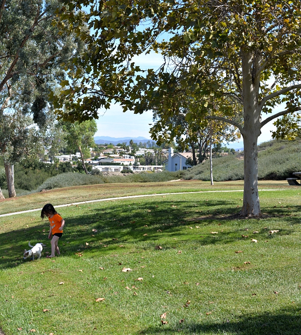 playing at the park