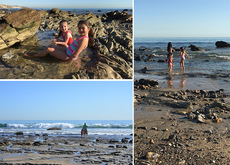 crystal cove beach dad with kids
