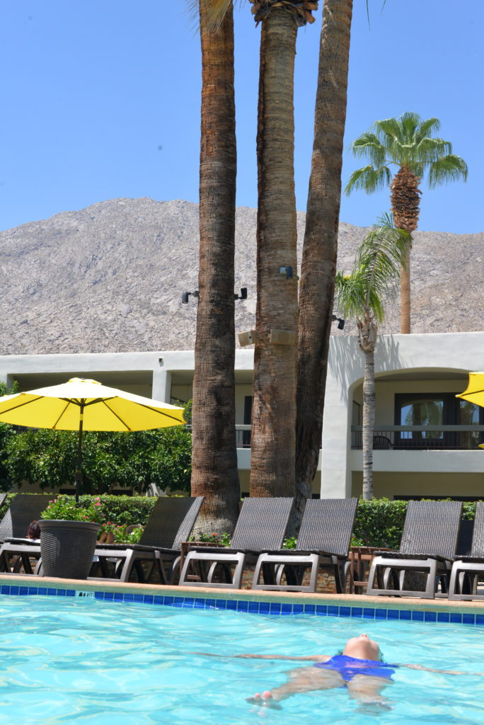 palm mountain pool and mountain view palm springs