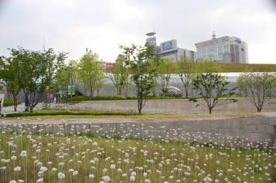 Dongdaemun Design Plaza26