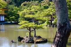 Kinkakuji Temple Kyoto7