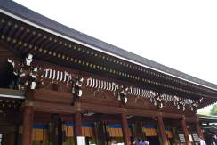 Meiji Shrine - Tokyo24