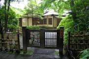 Meiji Shrine - Tokyo30