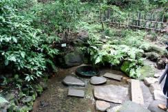Meiji Shrine - Tokyo35