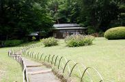 Meiji Shrine - Tokyo7