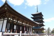 Nara Park15