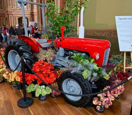 Melbo flower and garden show 2019 36
