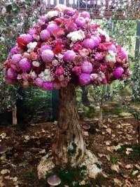 Melbo flower and garden show 2019 37