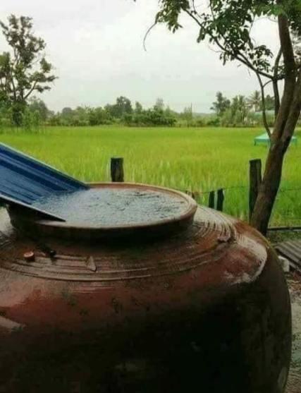 Thai Village56