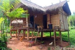 Thai Village69