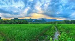 Thai Village72