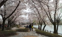 Bomun Lake Gyeongju 3