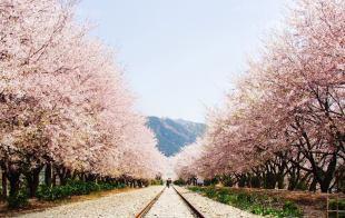 Gyeonghwa Station 3