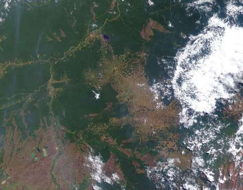 Changing Earth: Amazon deforestation, July 30, 2000