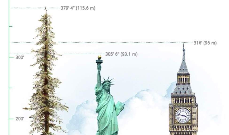 Height comparison of Hyperion (featured)