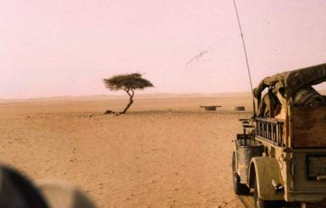Recently Lost Natural Wonders - Tree of Ténéré in 1961
