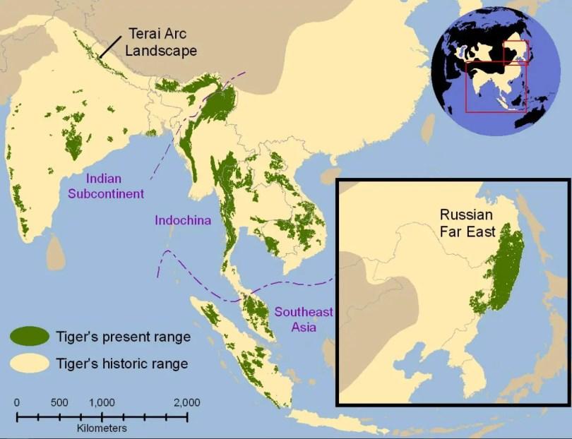 Tiger range map