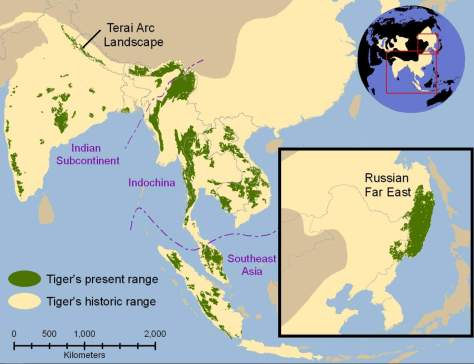 Tiger facts: tiger range map