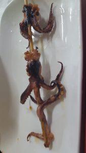 Guizhou China Octopus