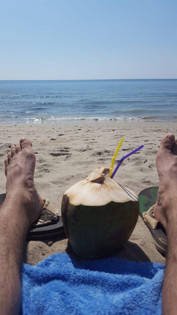 Koh Lanta Thailand Beach Coconut