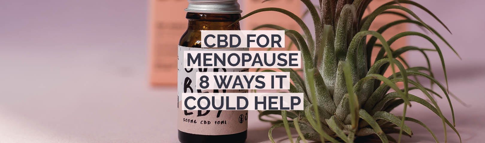 we take a look at how cbd might help with menopause symptoms