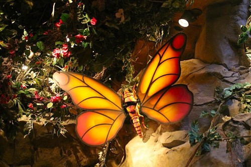 Rainforest Cafe Butterfly