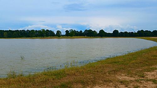 Frack Pond Carthage