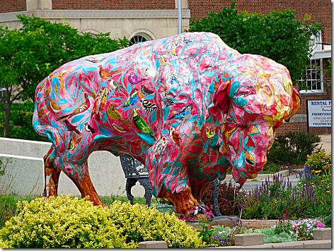 Bartlesville Buffalo 4