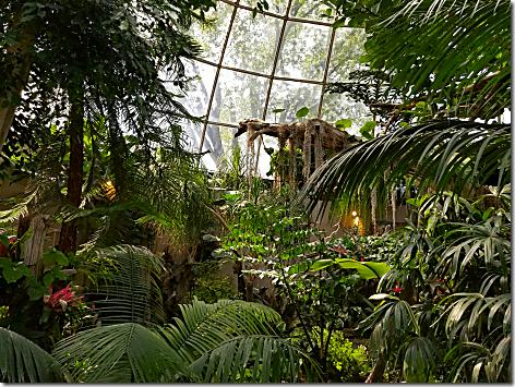 Reptile Gardens Dome 4