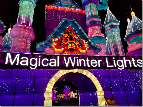 Houston Magical Winter Lights 1