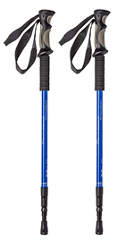 Cruise Walking Sticks