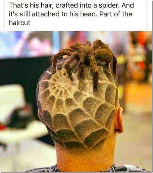 Spider HairCut