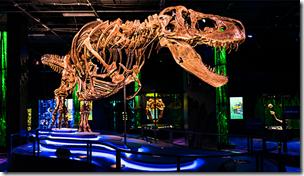 Victoria T-Rex
