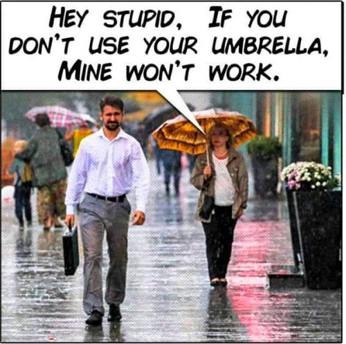 Hey Stupid