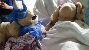 Dr. Pugsley and Bridget at the Hospital