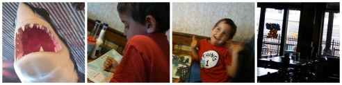 Matty collage
