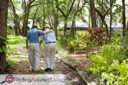 Elderly man walking with assistance in nature